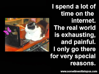 Image: cat looking at computer. Text: I spend a lot of time on the internet. The real world is exhausting, and painful. I only go there for very special reasons.