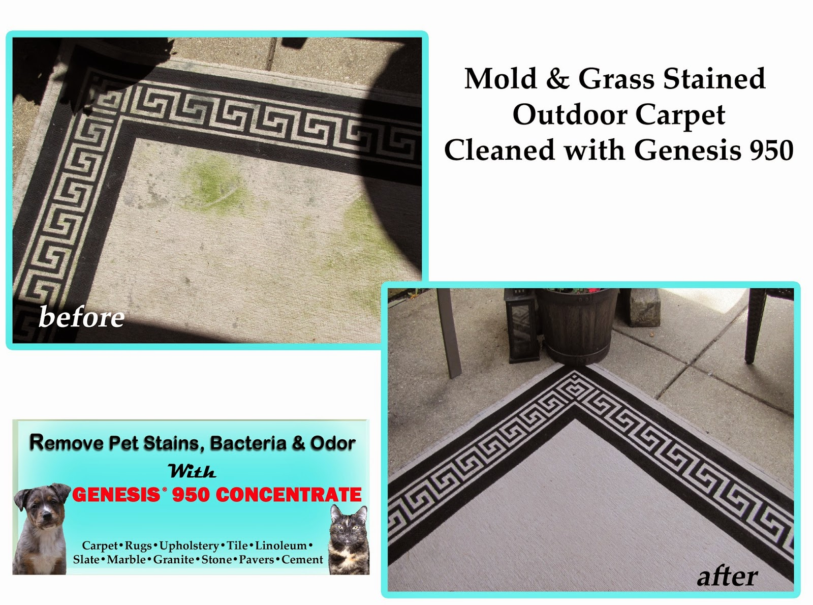 Remove Grass Stains From Carpet