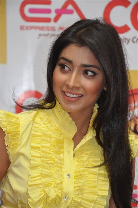 shriya saran at ccl promotional event photo gallery