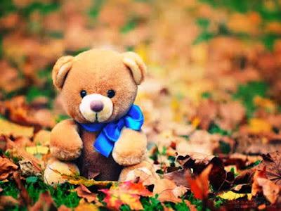 Gambar Wallpaper Teddy Bear Keren