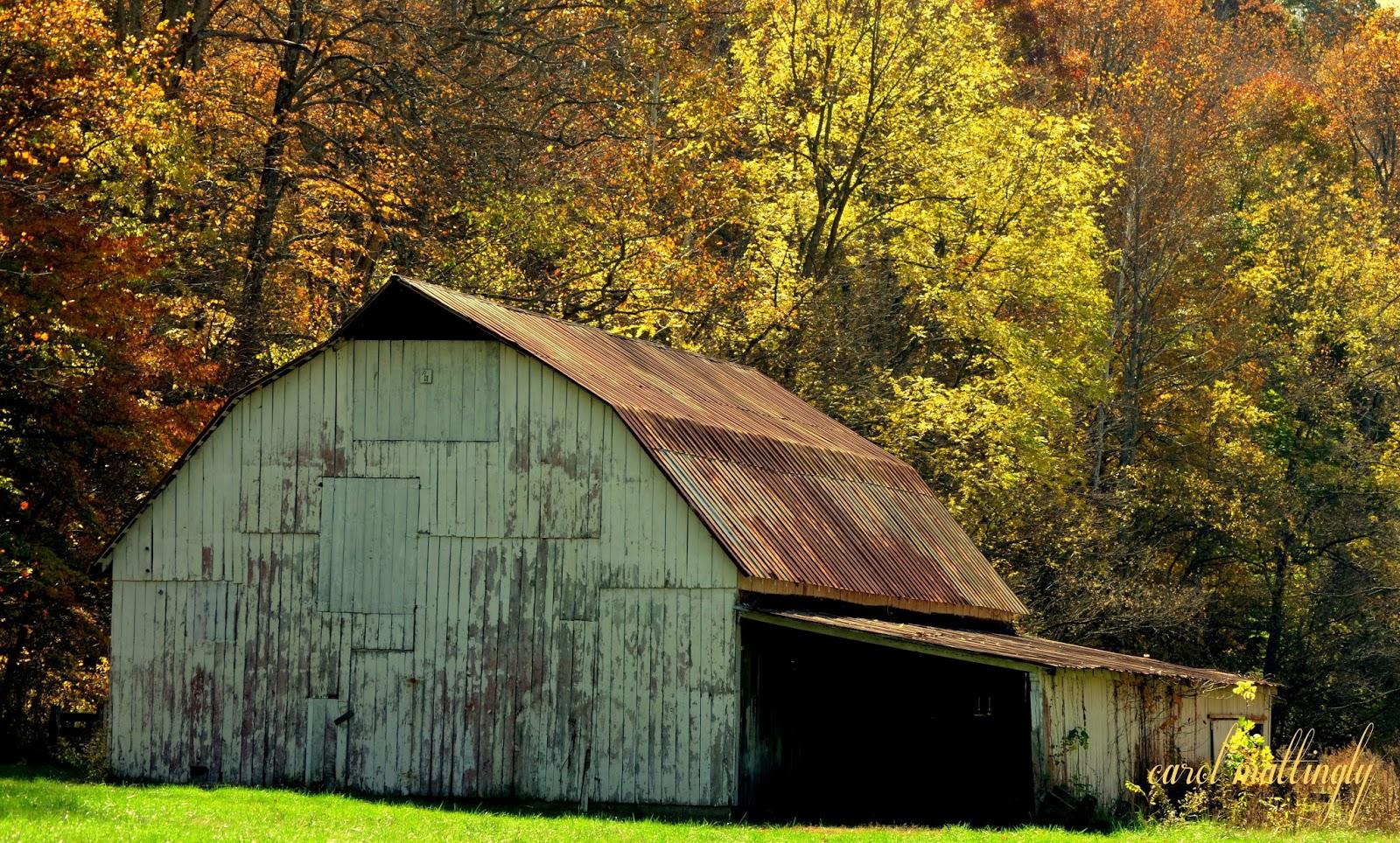 carol mattingly photography rustic barn leavenworth in