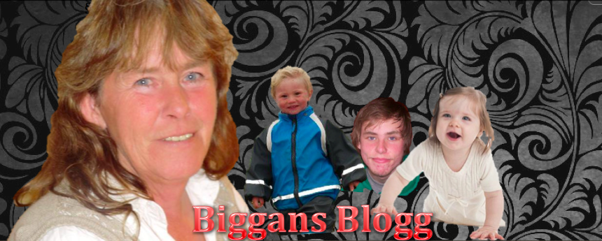 Biggans Blogg