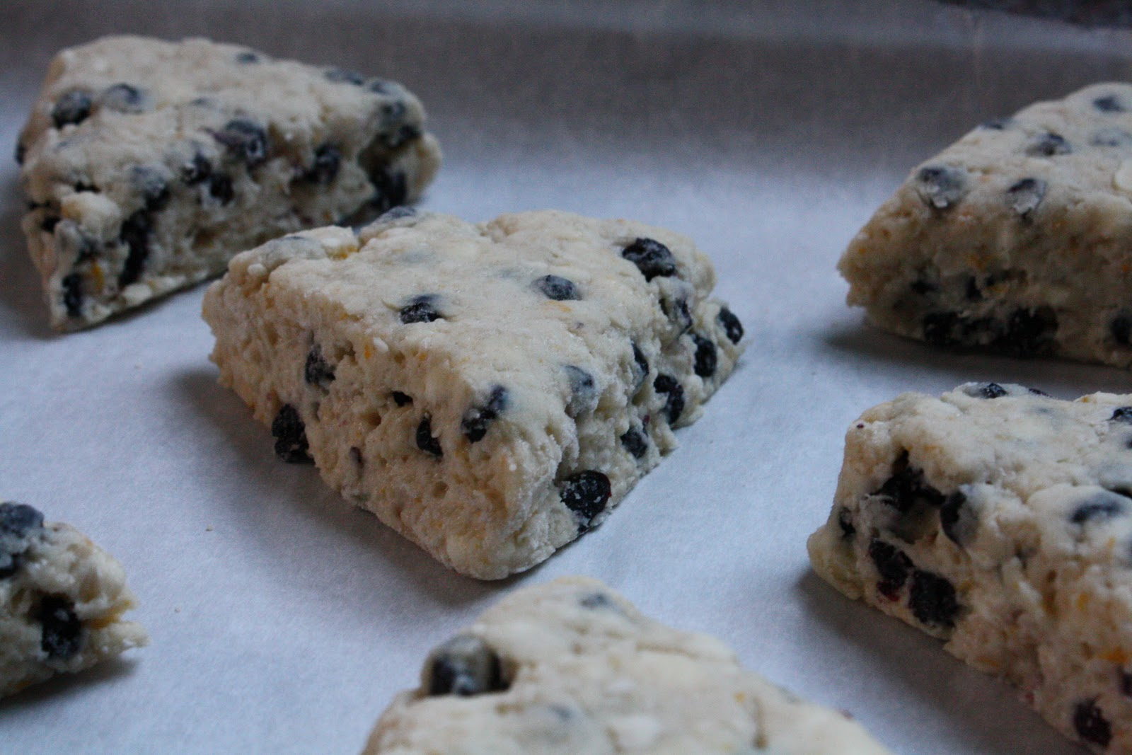 FlavorSings: Meyer Lemon and Dried Blueberry Scones