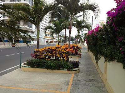 Turismo en Ecuador Salinas