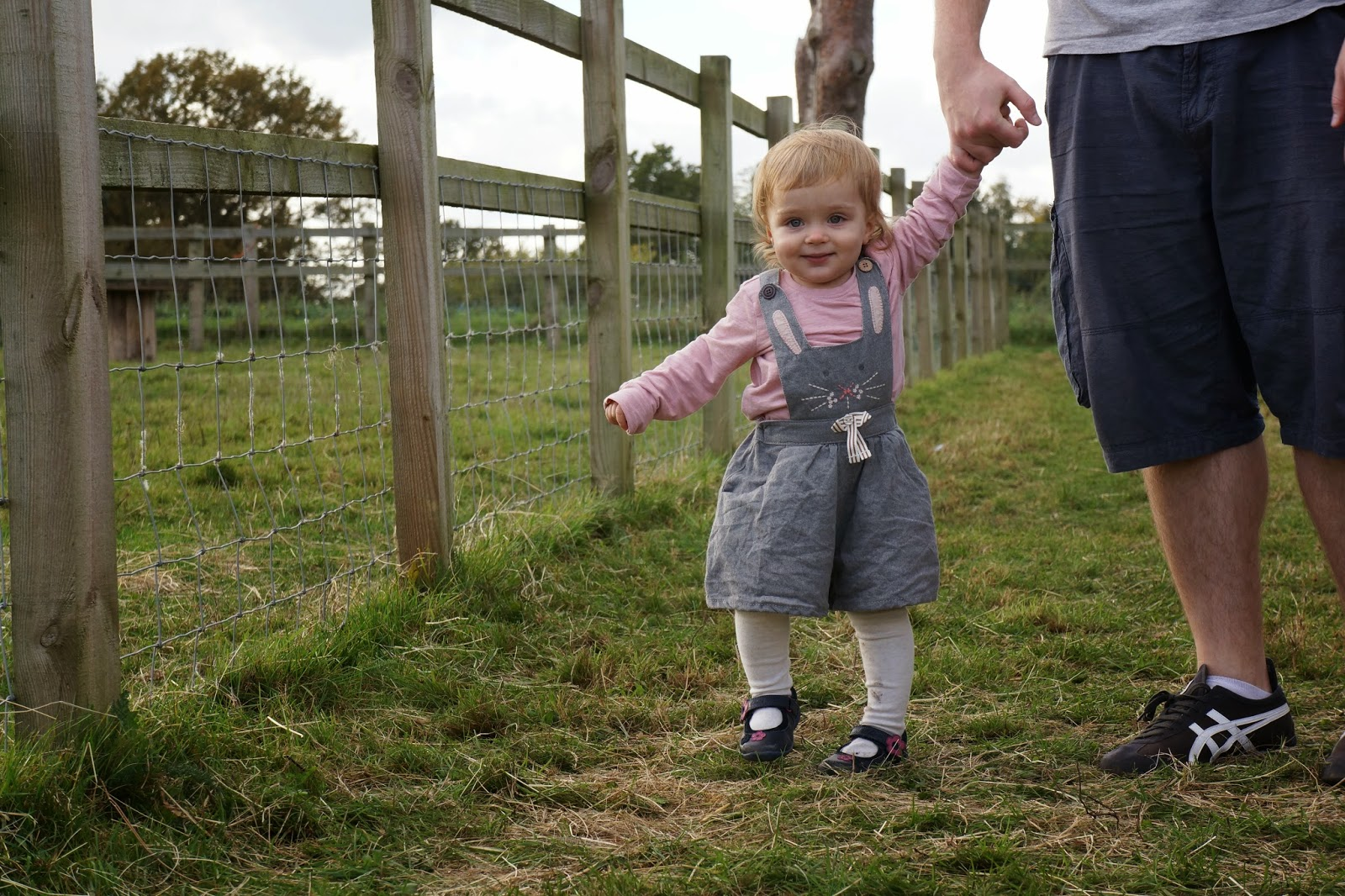 baby toddler grey dungarees Next