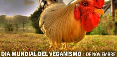 imagen dia mundial del veganismo 1 noviembre 11