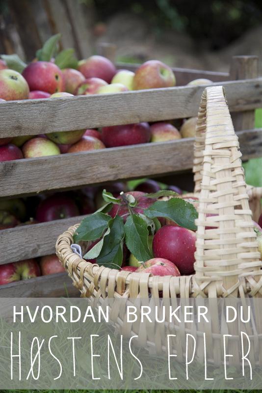 oppskriter og tips til epleforedling