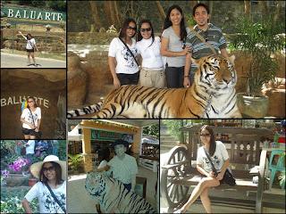 Baluarte, Ilocos Sur