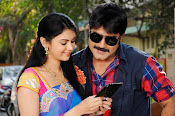 Veediki Dookudekkuva Movie Photos-thumbnail-20