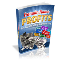 Domain Name Profits Guide