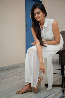 Actress Nikitha Narayan Picture Gallery in White Dress at Ladies and Gentleman Movie Press Meet  31.JPG