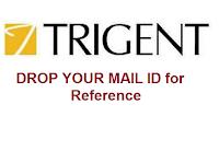 Trigent-Software-images