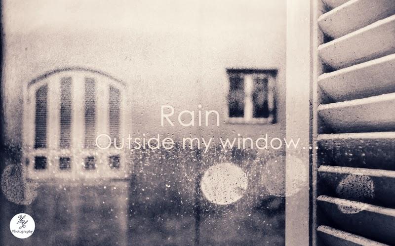 Rain Outside My Window - Y&Y Photography