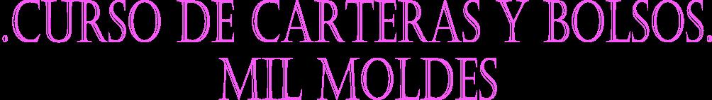 Curso de Capacitación en Carteras y Bolsos, Mil Moldes