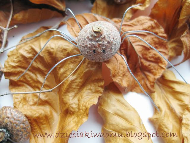 Jesienny pajączek