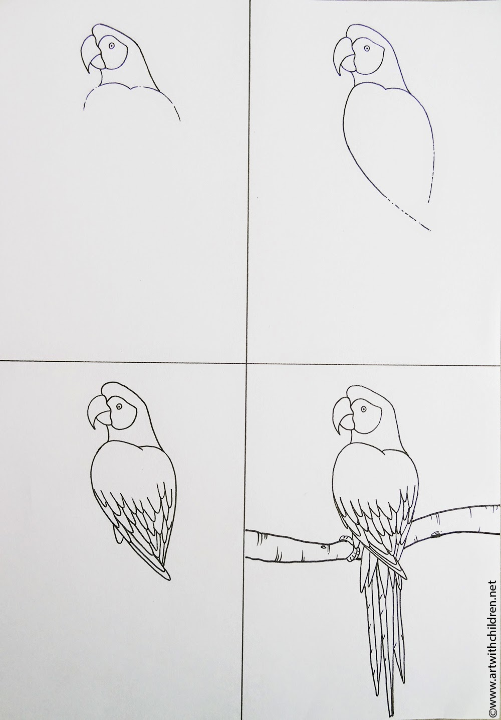 Flying Macaw Coloring Page Art With Children Beautiful