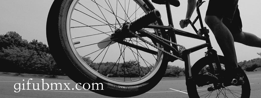 GIFU BMX.com