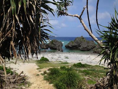 体験/観光 沖縄修学旅行 体験プログラム