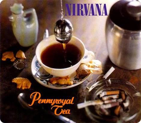 Nirvana Pennyroyal Tea Descargar
