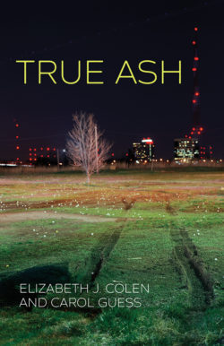 True Ash