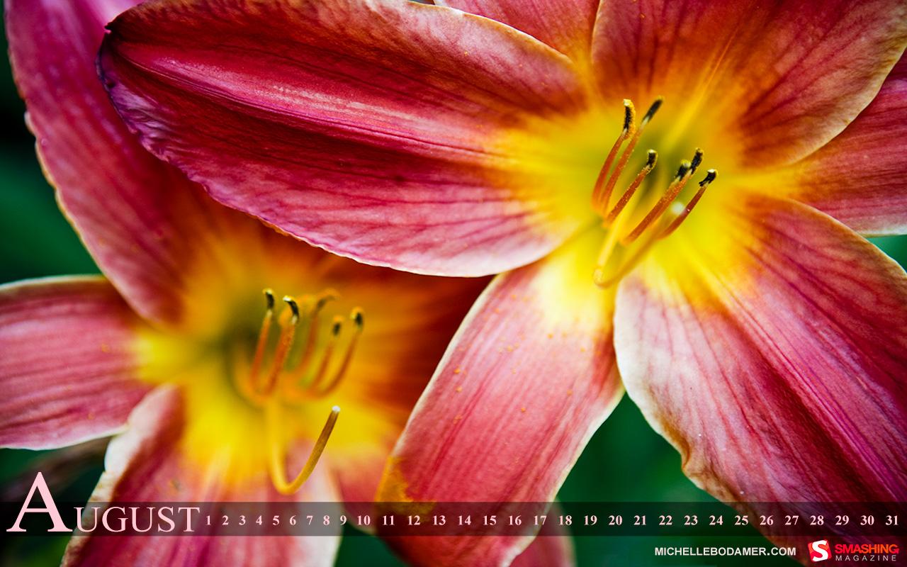 http://3.bp.blogspot.com/-x0FlKp9nwpc/Tji-saPfqzI/AAAAAAAAwXY/amyqITUEhAg/s1600/august-11-flower_summer__98-calendar-1280x800.jpg