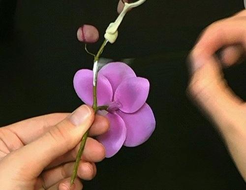 Орхидея мастер класс полимерная глина