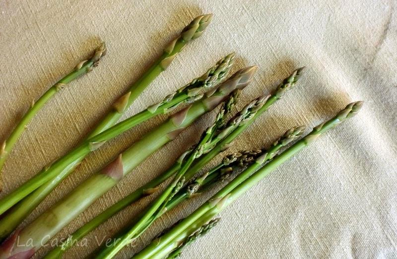 asparagi dell'orto