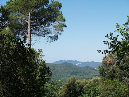 El Montseny des del Camí de la Serra