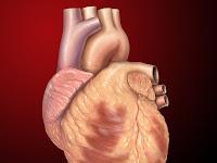 Inilah 7 Penyebab Penyakit Jantung yang Perlu Anda Ketahui