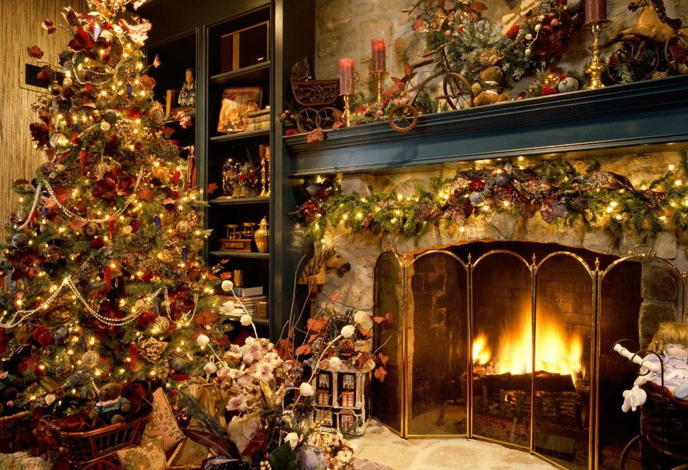 Christmas Day is not complete without a Christmas tree. Normally, many ...