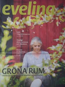 Läs om Helenas trädgård i Evelina!