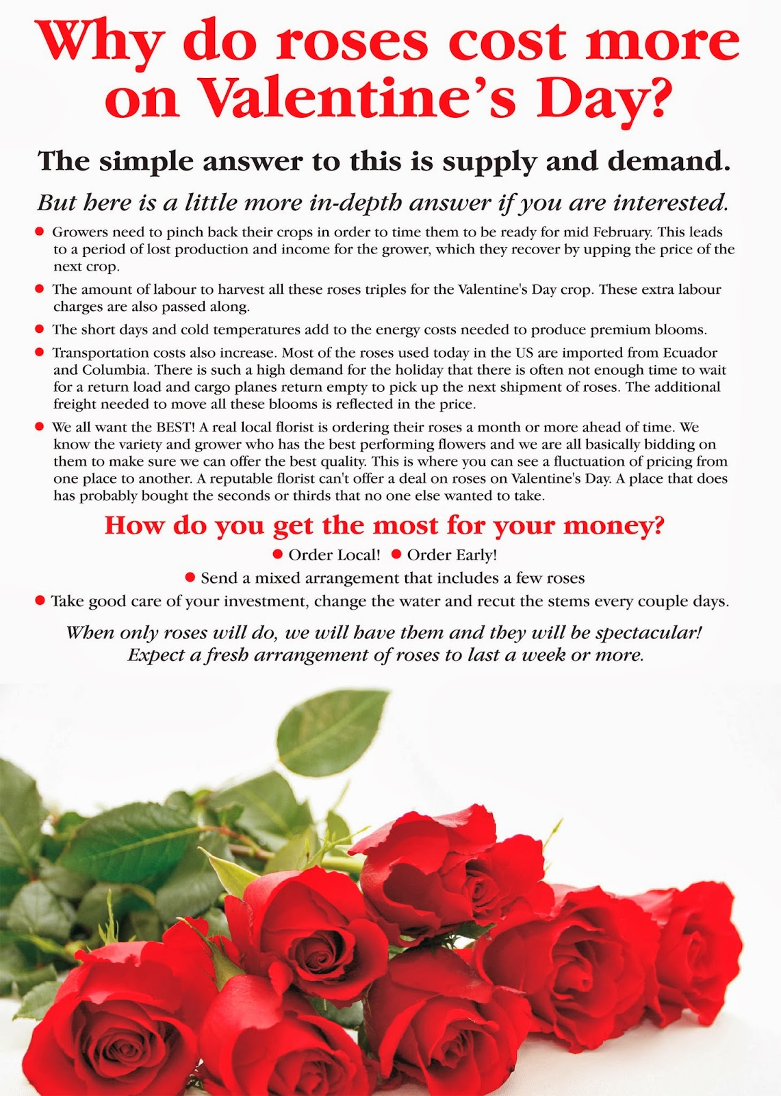 How to take care of roses - Do You Wonder Why Flowers And Roses In Particular Cost More On St Valentines Day Here Is A Quick Explanation