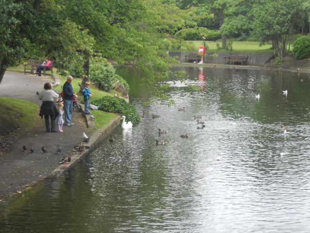 Lake at Botanic Gardens.