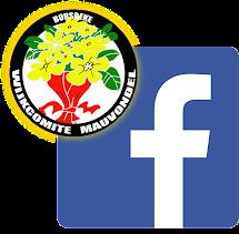 Volg ons ook op Facebook !