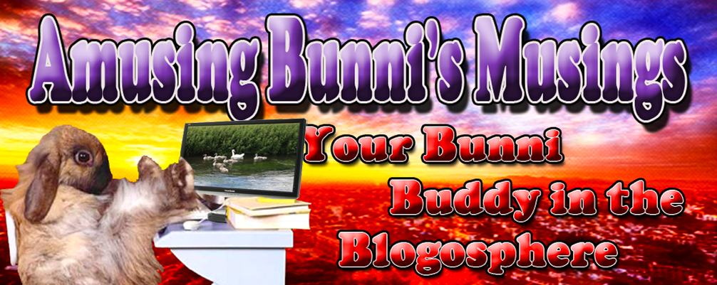 Amusing Bunni&#39;s Musings