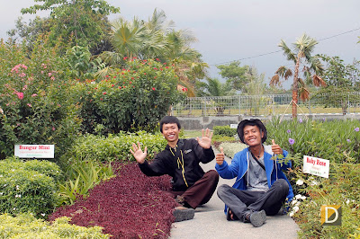 Herbal Medicine Universitas Jember