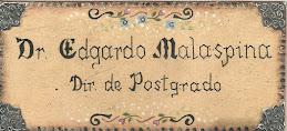 DIRECTOR DE POSTGRADO