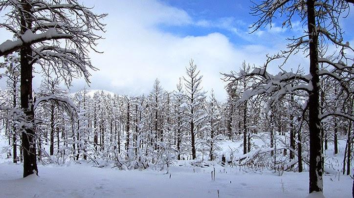 lugares mais frios do mundo, lugar, frio, gelado, gelo, inverno