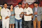 Meera Movie Audio release function photos-thumbnail-11