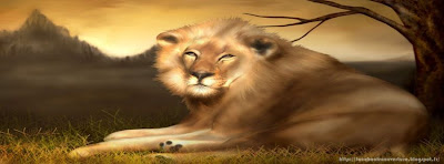 Couverture facebook grand lion