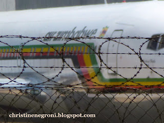 Air+Zimbabwe+logo+and+barbed+wire+1.jpg