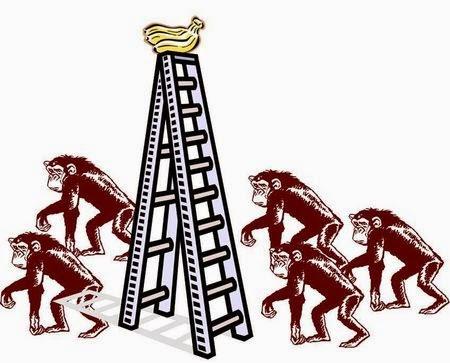 El modelo de los 5 monos
