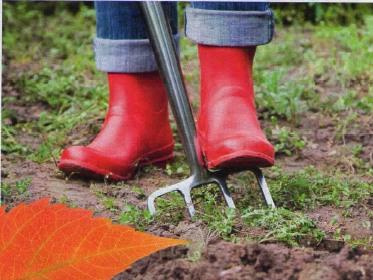 Картинки по запросу подготовка почвы под сад