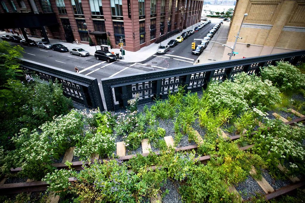 Design Where The High Line