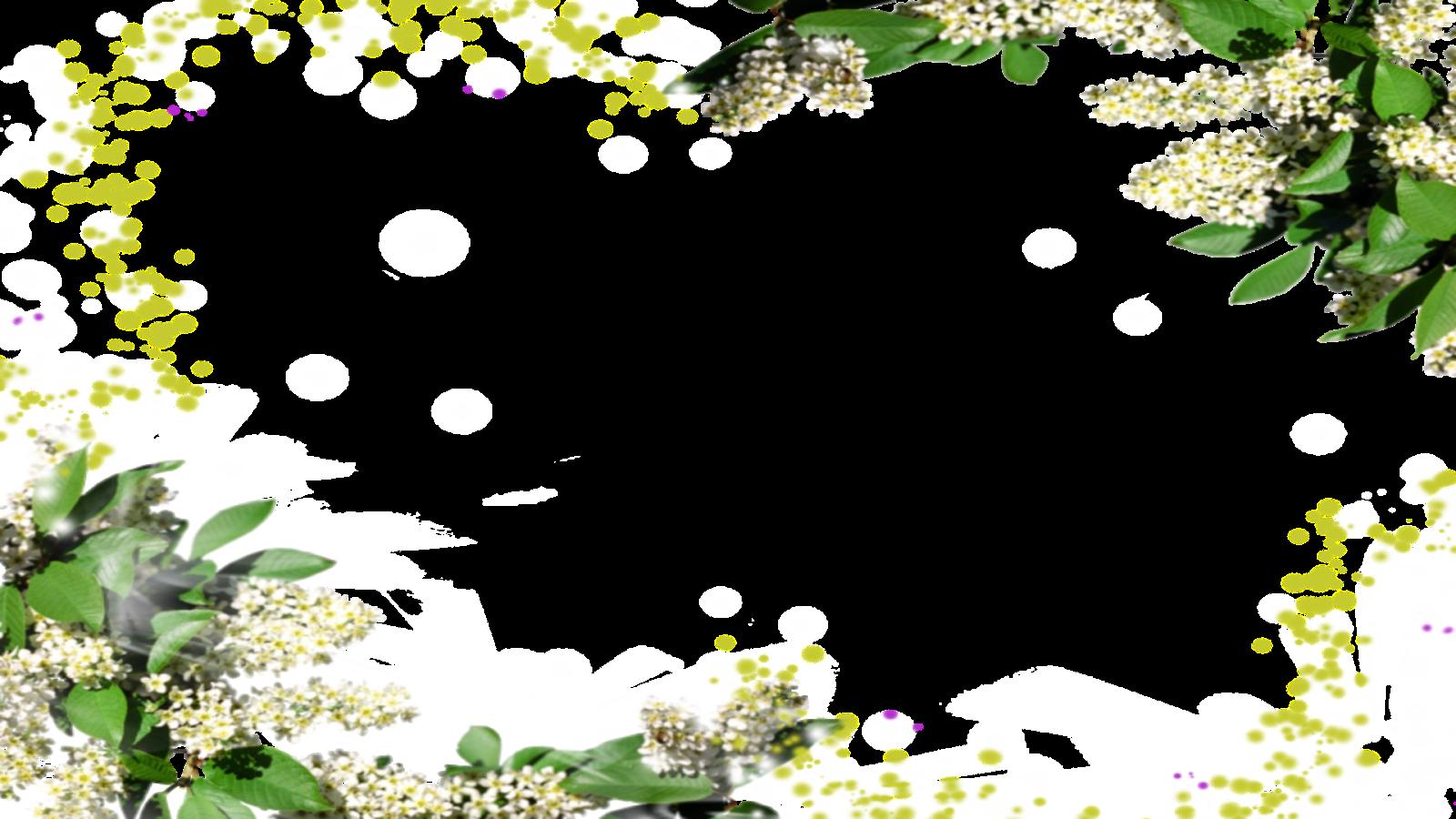 Moldura Primavera 5 png