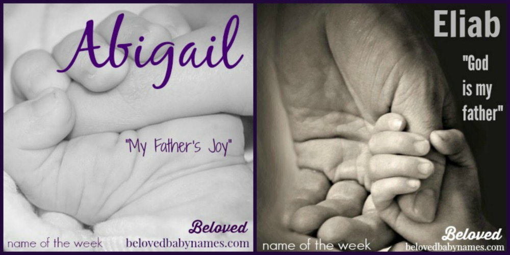 Biblical Meaning Of The Name Abigail