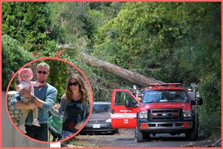Eric Dane and his family escaped from tree collapse
