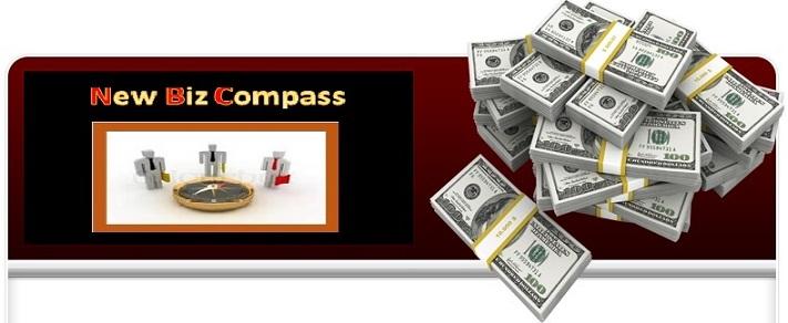 New Biz Compass