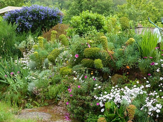 La route des livres jardins de bretagne for Visite de jardins de particuliers