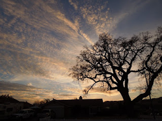 A Paso Robles Sunset in Winter, © B. Radisavljevic